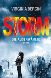 STORM DE downloaded cover