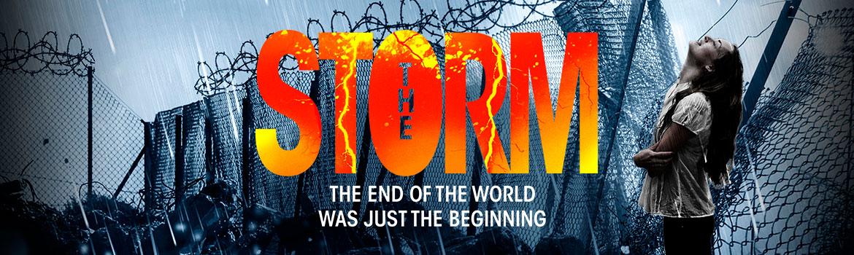 the storm virginia bergin pdf